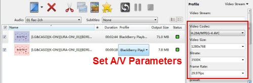 set output for converting movies to BlackBerry Q10