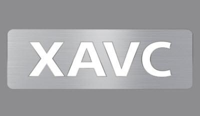 XAVC or XAVC S files
